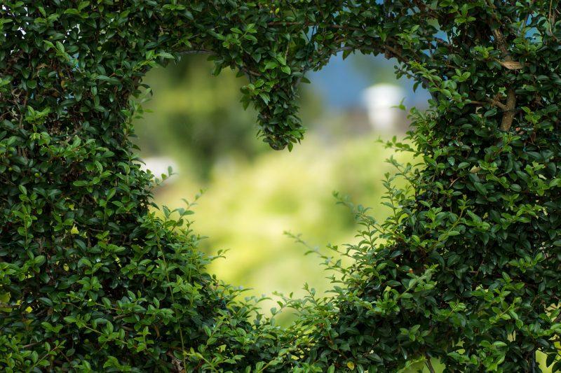 Овните в любовта: Чувствени и болезнено честни