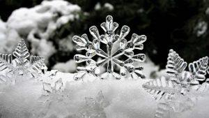 Астрономическата зима дойде с пролетно време