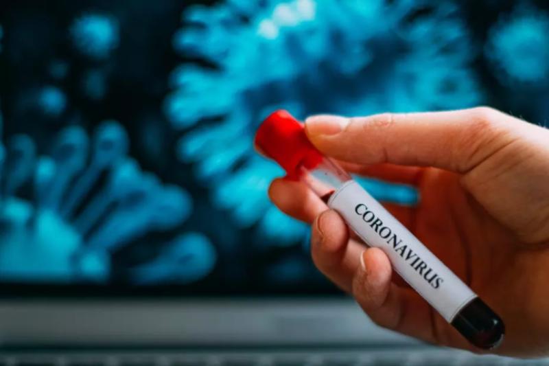 Установиха как организмът сам се бори с коронавируса