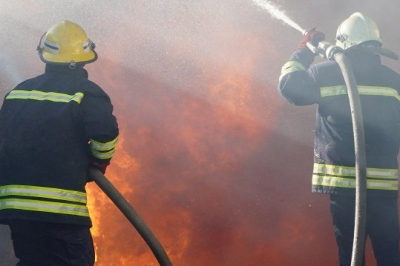 Стотици декари реколта изгоряха край Хасково