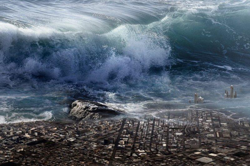 Майка прегърна отново сина си, изчезнал при цунами преди 16 години