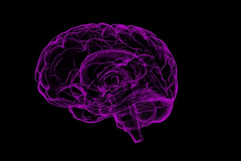 Аутопсии на починали от COVID пациенти разкриват мозъчни увреждания със степен на инсулт