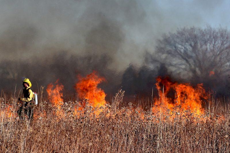 Десетки военни с вертолет се включиха в гасенето на пожара край Хисаря