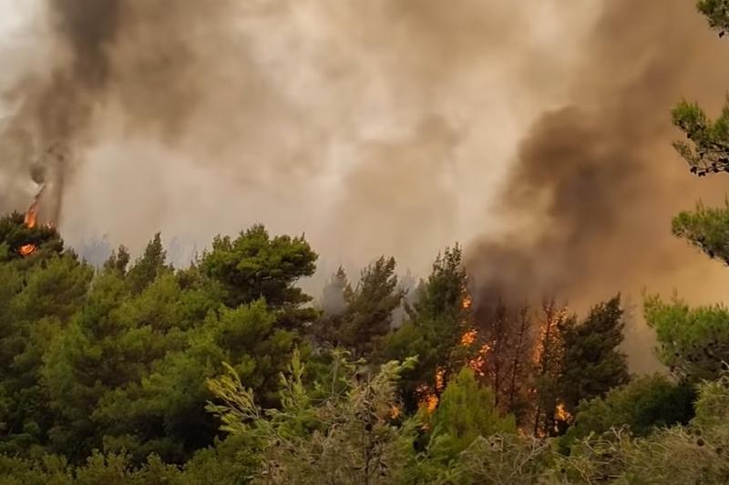 Масова евакуация в Гърция, ситуацията с пожарите е извън контрол (ВИДЕО)