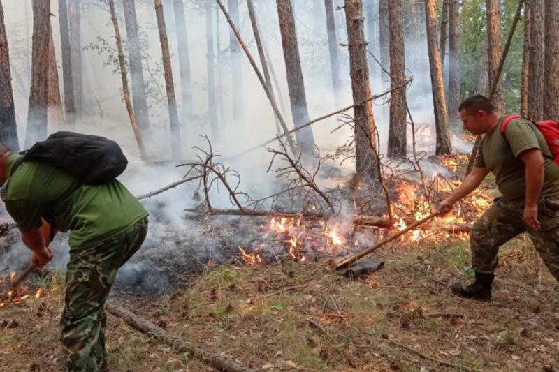 Отново се разрасна пожарът над Югово